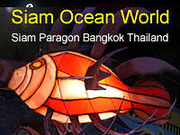 Siam Ocean World at Siam Paragon Bangkok, Thailand