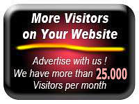 More Visitors on your Website